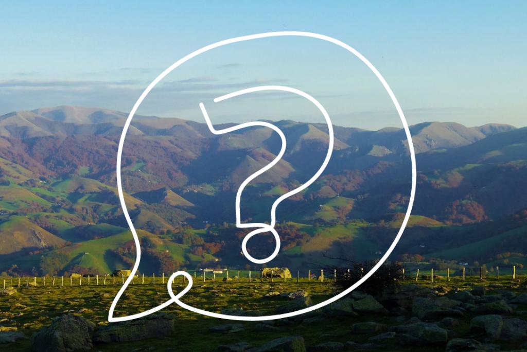 Que faire au Pays Basque pendant vos vacances d'été ?